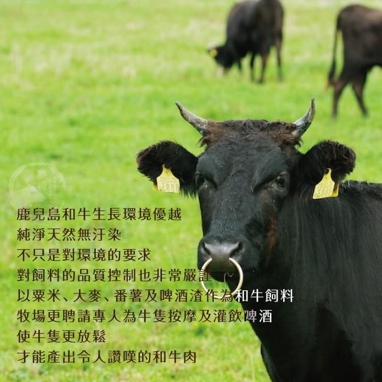 欣明◆日本A5純種黑毛和牛雪花去骨火鍋肉片(200g/盒) 5