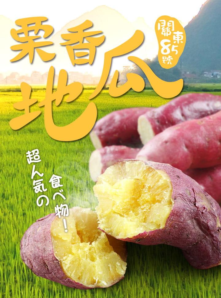 【愛上美味】特A級日本栗香地瓜 1