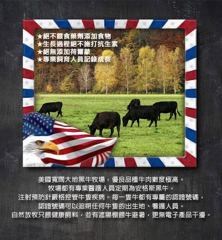 美國安格斯PRIME嫩肩牛排(100g/入) 1