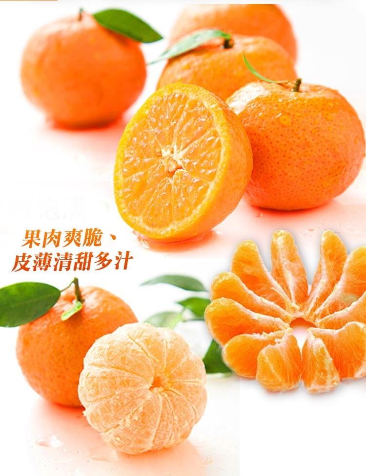 【預購】苗栗迷你珍珠砂糖橘禮盒(4斤±10%/盒) 5