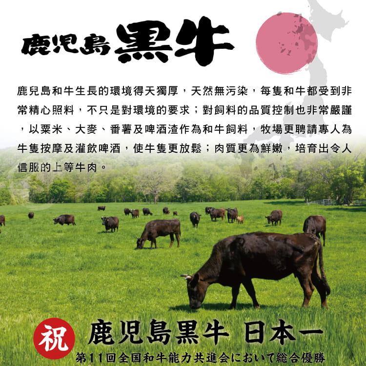 欣明◆日本A5純種黑毛和牛凝脂牛排(250g/1片) 5