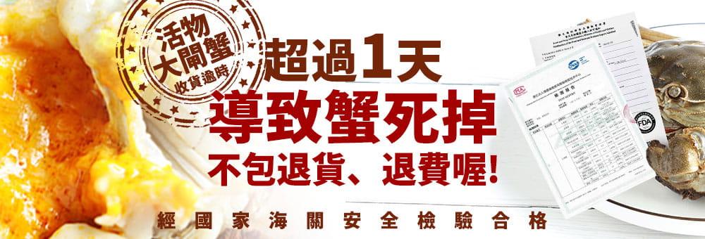 江蘇平望湖大閘蟹近五兩-肥美飽滿(約180g/隻) 11