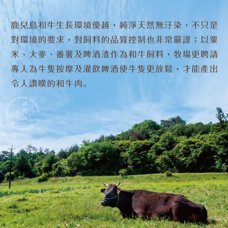 欣明◆日本A4純種黑毛和牛厚切牛排(350g/1片) 5