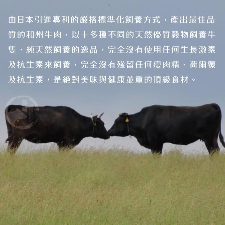 欣明◆美國日本種和州牛9+老饕肋眼牛排(280g/1片) 5