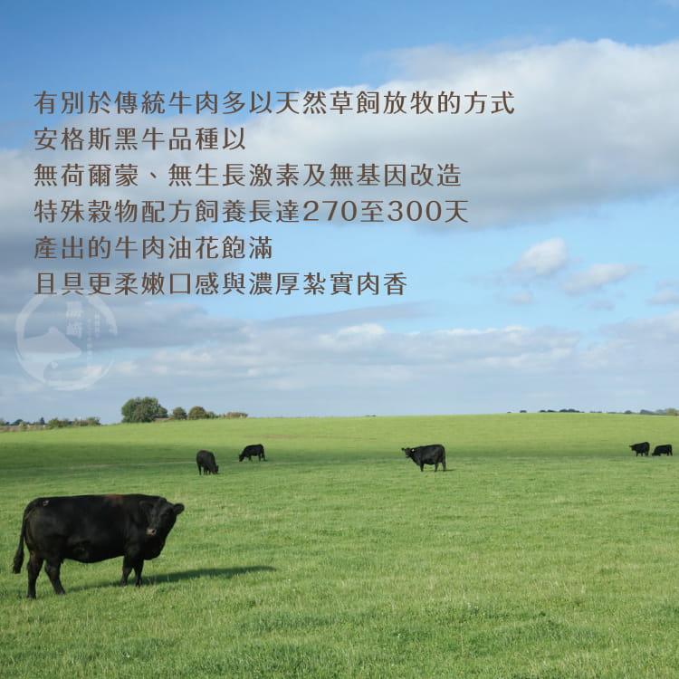 欣明◆澳洲安格斯濕式熟成肋眼牛排(200g/1片) 5