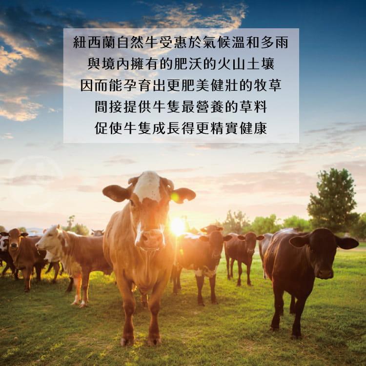 欣明◆紐西蘭PS帶骨牛小排~大份量(200g/1片) 5