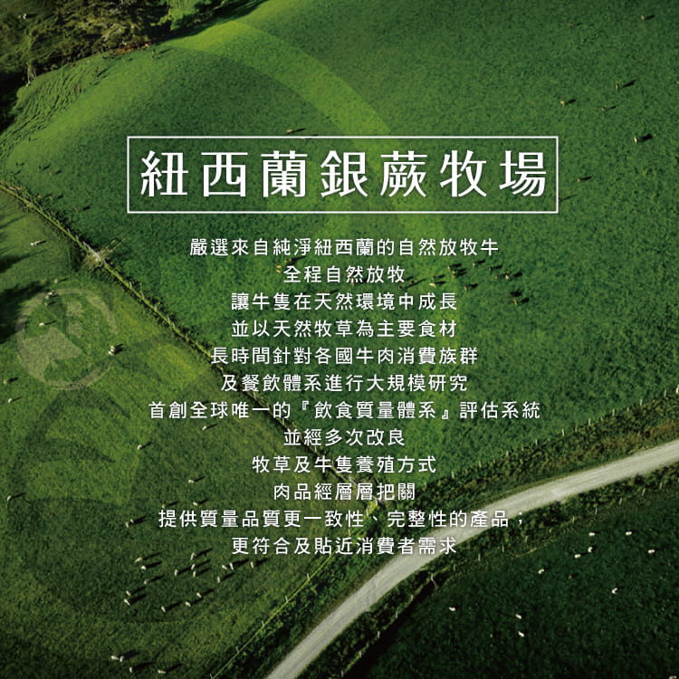 欣明◆紐西蘭銀蕨PS熟成巨無霸沙朗牛排~比臉大(450g) 5
