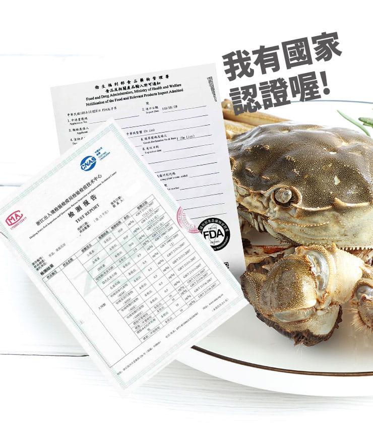 江蘇平望湖大閘蟹近五兩-肥美飽滿(約180g/隻) 9