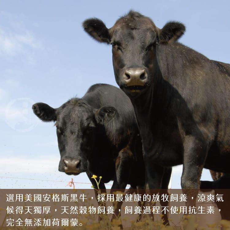 欣明◆美國藍帶雪花牛火鍋肉片(200g/1盒) 5