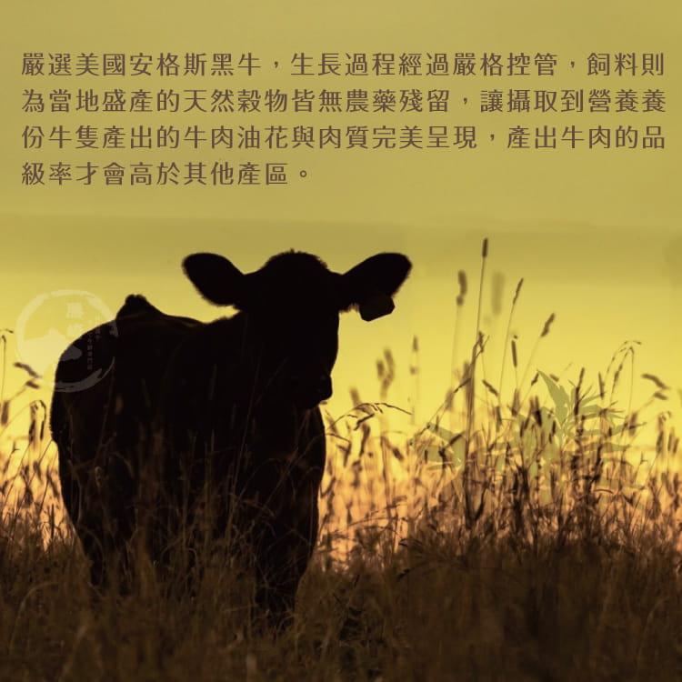 欣明◆美國安格斯總統級霜降牛排~比臉大(600g/1片) 5