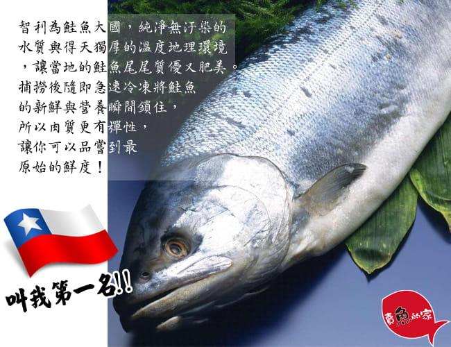 【賣魚的家】智利鮭魚切片(90g±5%/片) 2