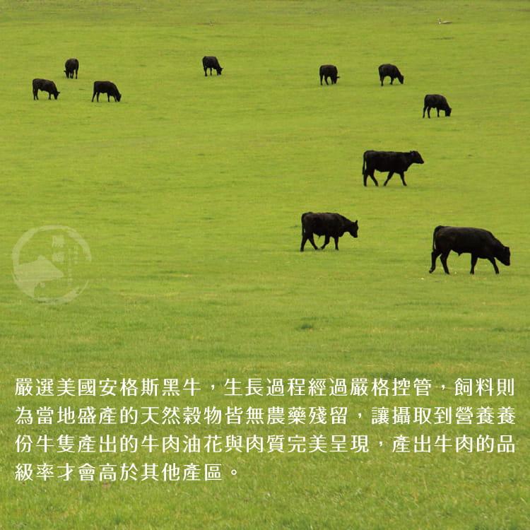 欣明◆美國安格斯藍帶梅花骰子牛(250g/1包) 4