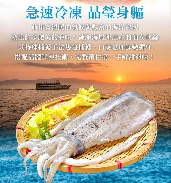 【愛上美味】野生鮮凍天使軟絲(300g±10%/2隻/包) 1