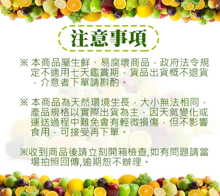 【預購】苗栗迷你珍珠砂糖橘禮盒(4斤±10%/盒) 6
