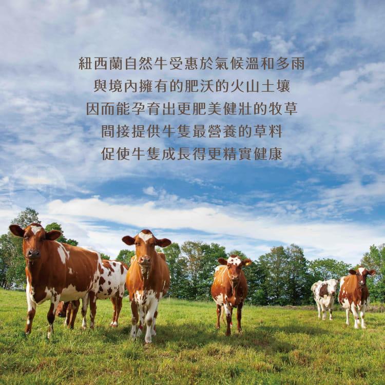 欣明◆紐西蘭特優雪花牛排(100g/1片) 5