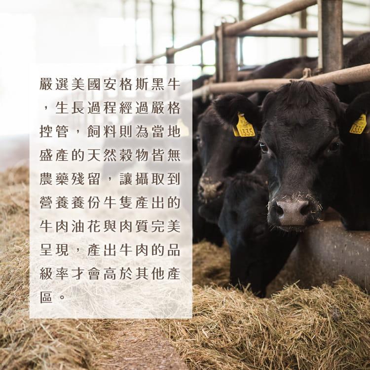 欣明◆巨無霸PRIME沙朗牛排(450g/1片) 5