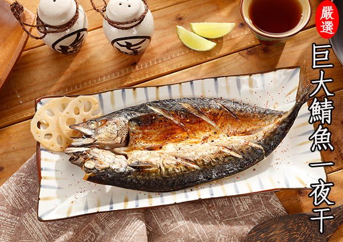 【海之金】正挪威XXL鯖魚一夜干(380g/尾) 1