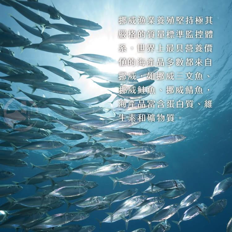 欣明◆挪威薄鹽鯖魚切片(150g/1片) 5