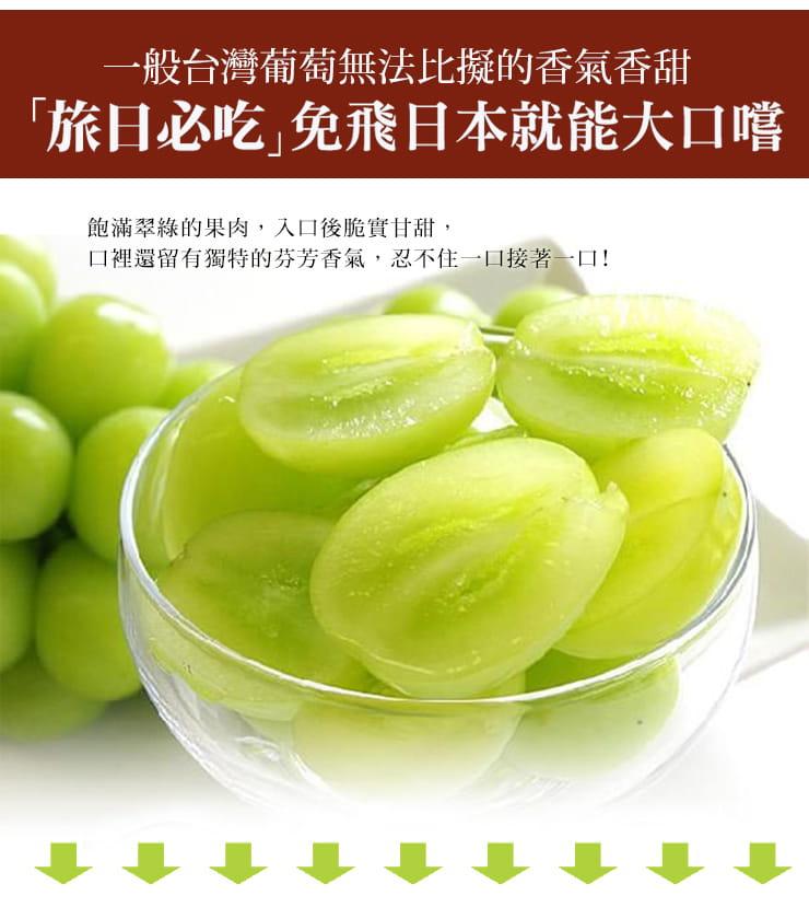 【築地一番鮮】日本空運頂級無籽麝香葡萄(約550g/串) 6