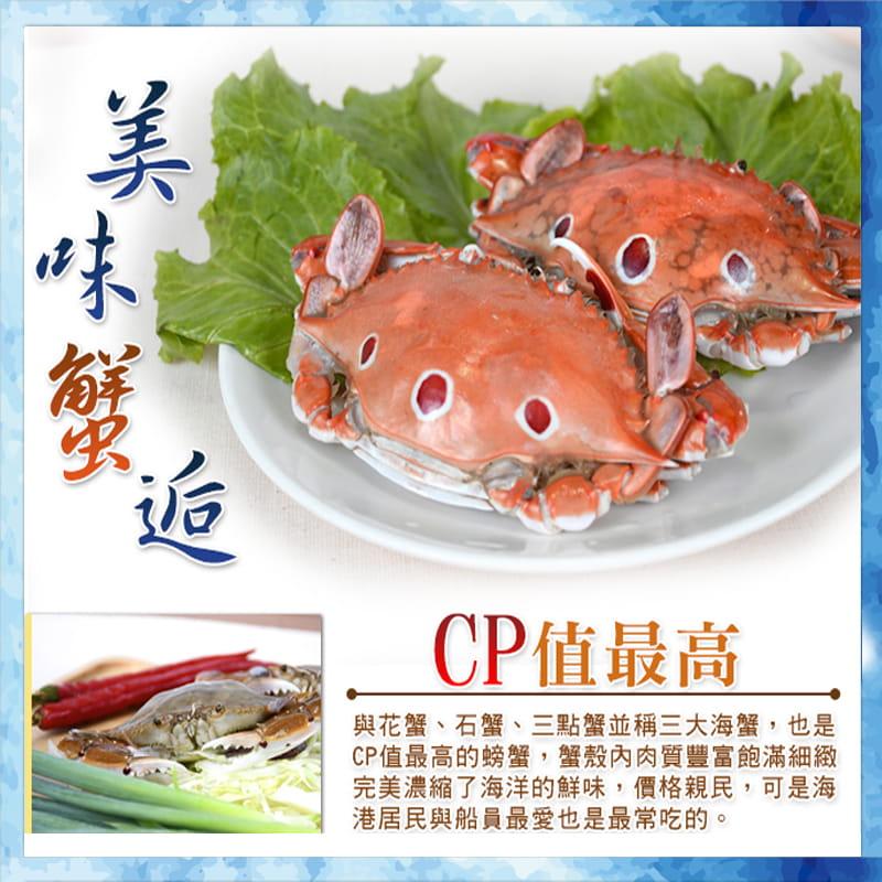 海港現撈活凍肥美三點蟹 (淨重330g+-10%/包) 3
