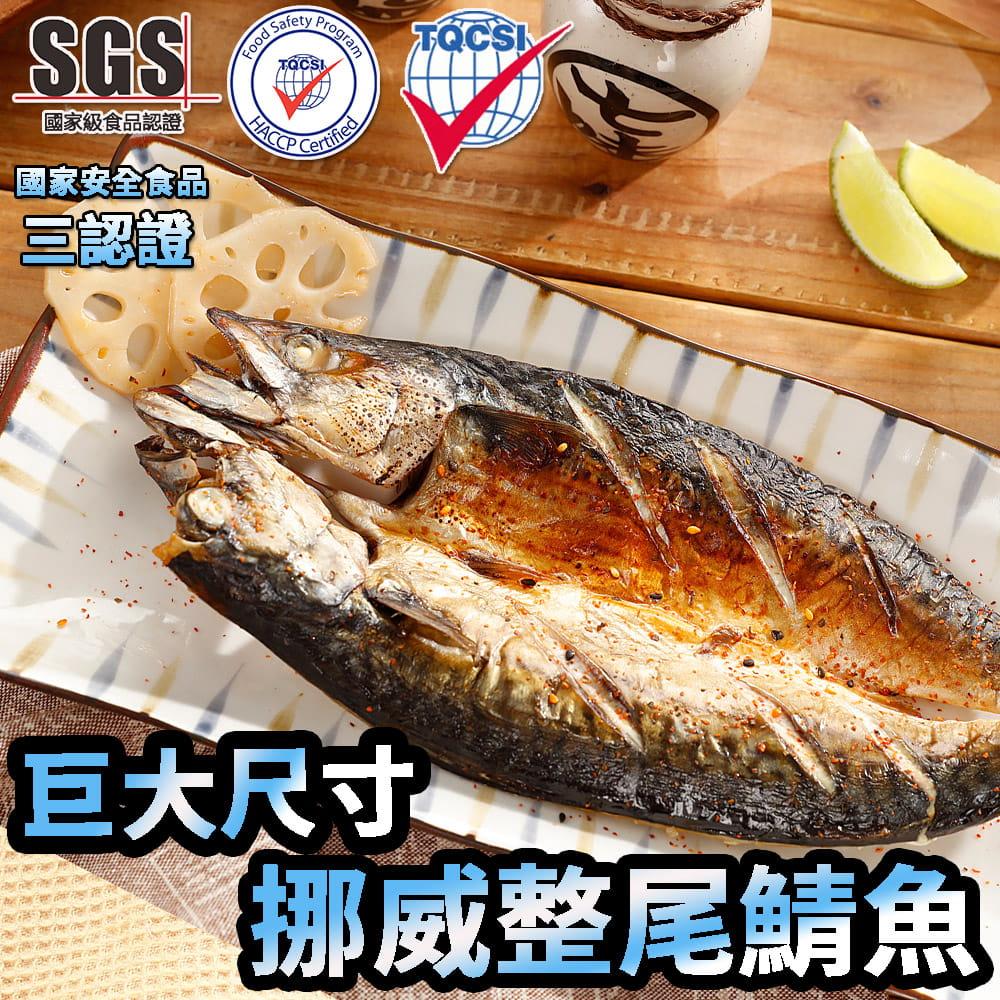 【海之金】正挪威XXL鯖魚一夜干(380g/尾) 0