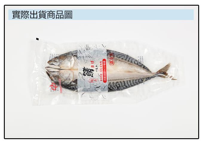 【海之金】正挪威XXL鯖魚一夜干(380g/尾) 5