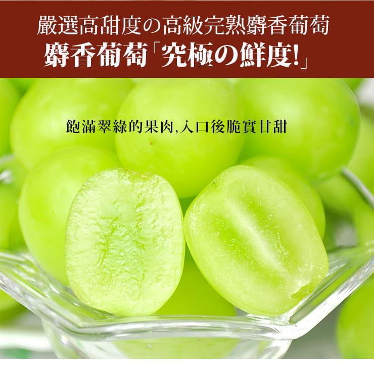 【築地一番鮮】日本空運頂級無籽麝香葡萄(約550g/串) 4