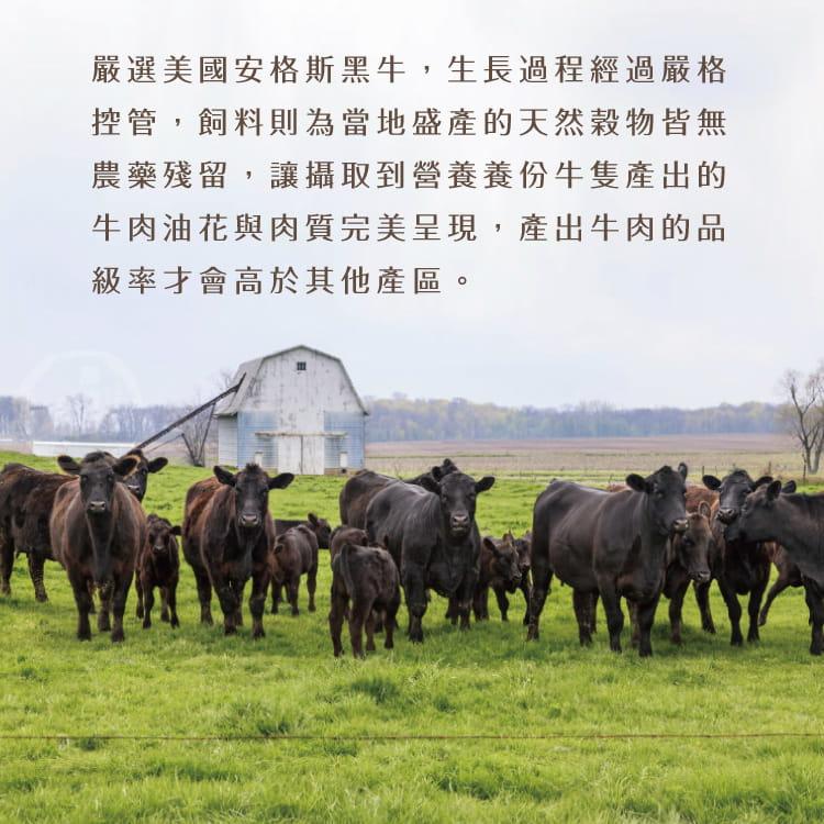 欣明◆美國安格斯雪花沙朗牛排~比臉大(450g/1片) 5