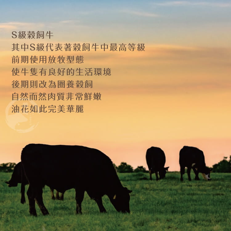 欣明◆澳洲S榖飼熟成戰斧牛排~小戰神(600g/1片) 5