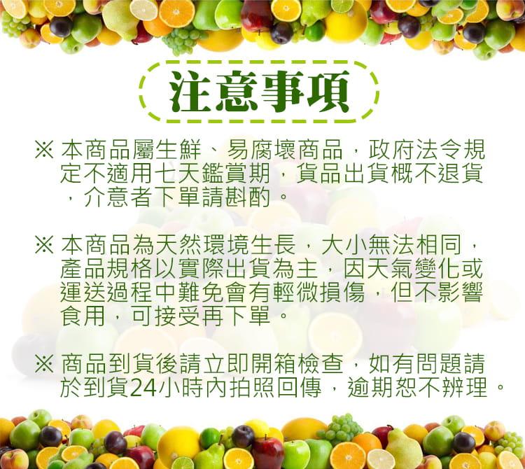 產地直送 A級台19飽滿香甜百香果禮盒(4斤/箱) 7