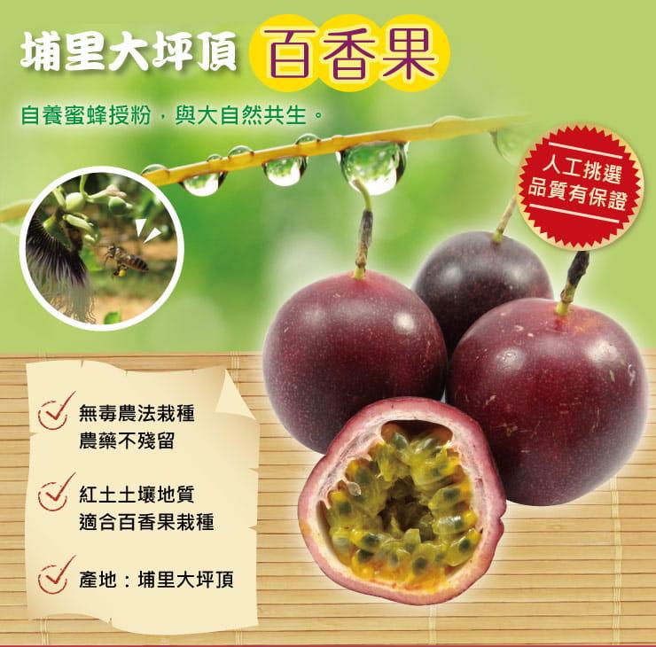 南投埔里超大香甜百香果5斤(約43顆-50顆)) 1