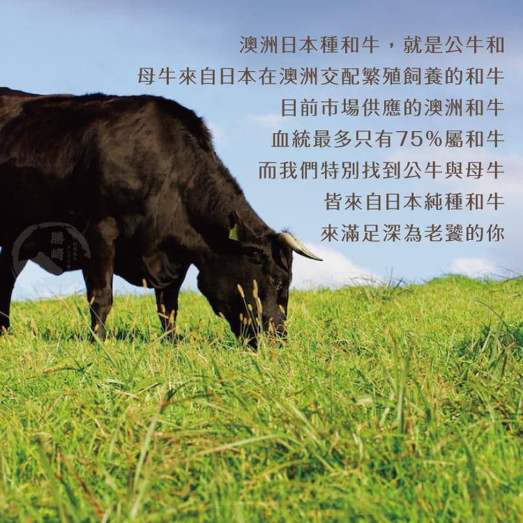 欣明◆澳洲日本種M9厚切老饕和牛沙朗(280g/1片) 5