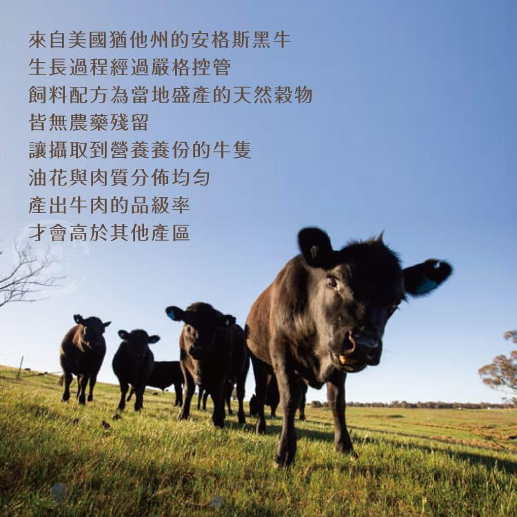 欣明◆美國藍帶厚切凝脂霜降牛排(300g/1片) 5