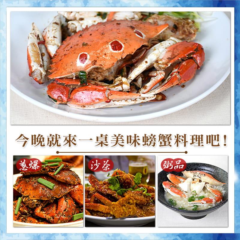 海港現撈活凍肥美三點蟹 (淨重330g+-10%/包) 5