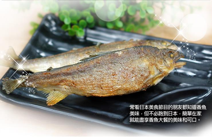 【築地一番鮮】宜蘭帶卵小香魚(12尾裝/920G/盒) 3