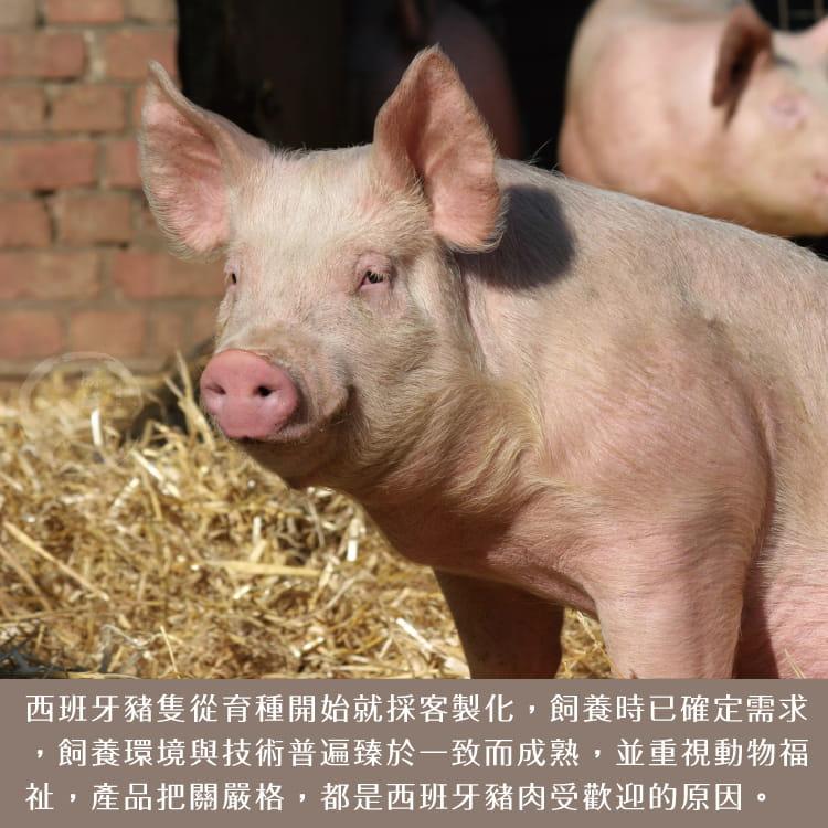 欣明◆頂極黃金六兩霜降松板豬(300g/1~2片) 8