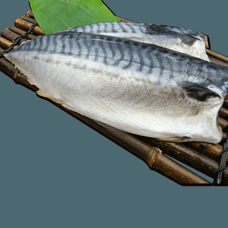 【百匯集】XXL挪威薄鹽鯖魚片 (實重)190g±10%/片 4