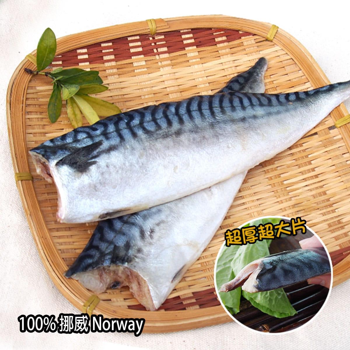 【百匯集】XXL挪威薄鹽鯖魚片 (實重)190g±10%/片 0