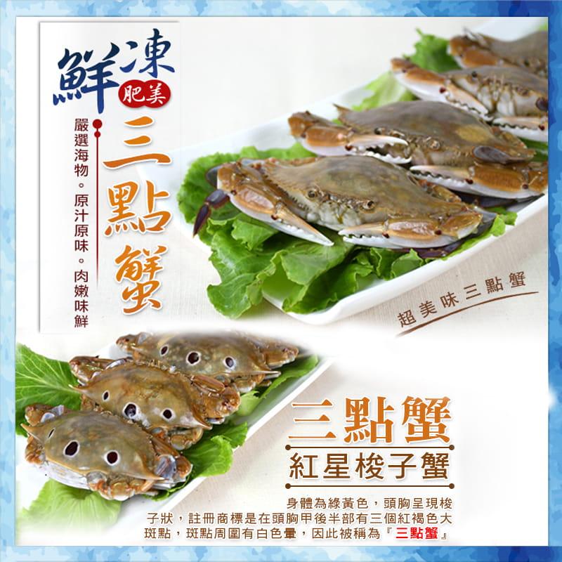 海港現撈活凍肥美三點蟹 (淨重330g+-10%/包) 2