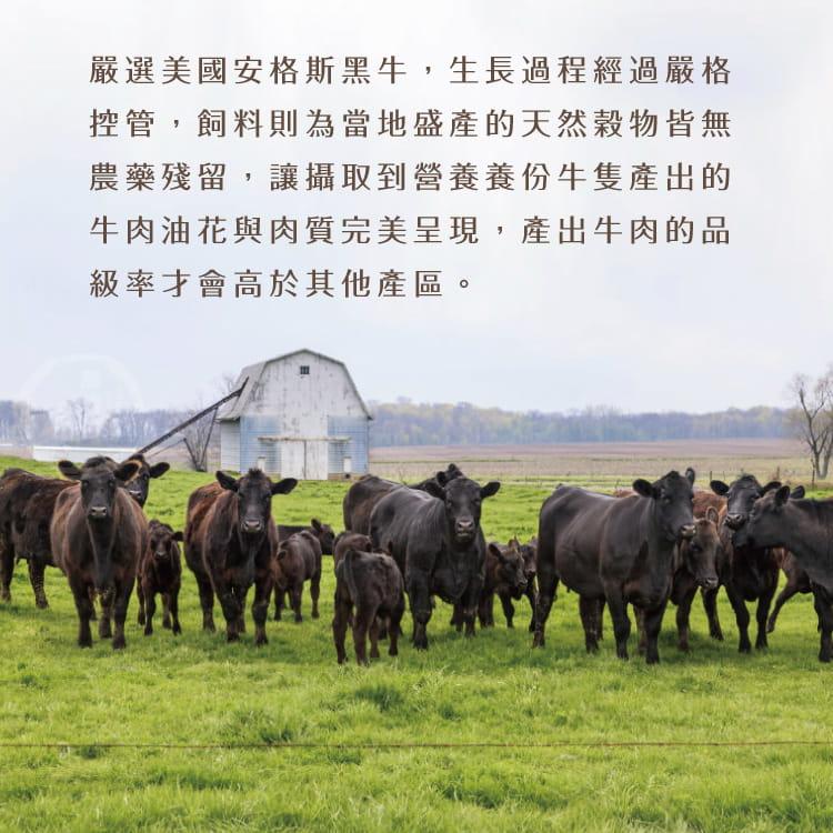 欣明◆美國安格斯雪花沙朗牛排~超厚切(450g/1片) 5
