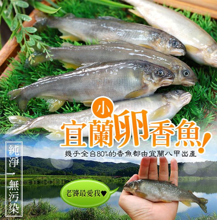 【築地一番鮮】宜蘭帶卵小香魚(12尾裝/920G/盒) 1