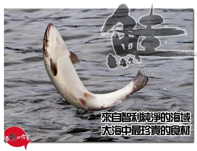 【賣魚的家】智利鮭魚切片(90g±5%/片) 3