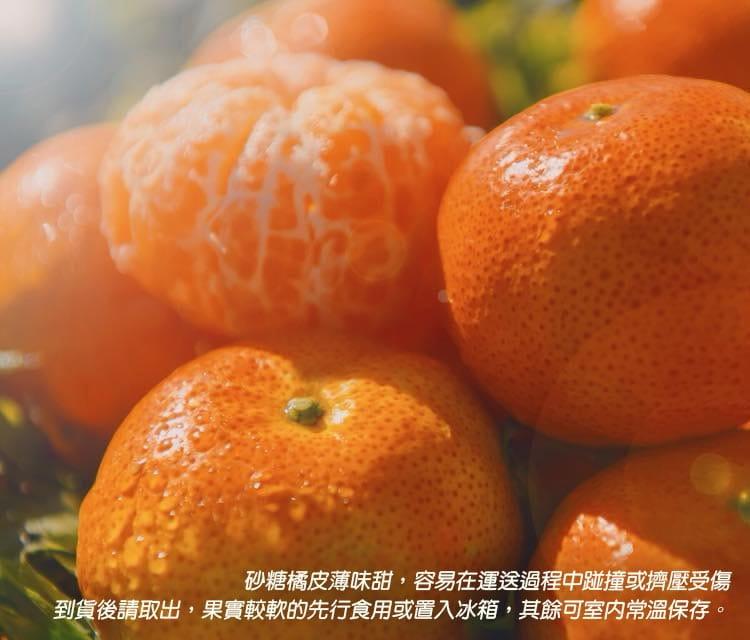 【預購】苗栗迷你珍珠砂糖橘禮盒(4斤±10%/盒) 4