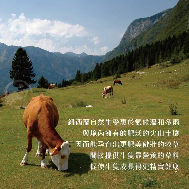 欣明◆紐西蘭PS帶骨牛小排(100g/1片) 4