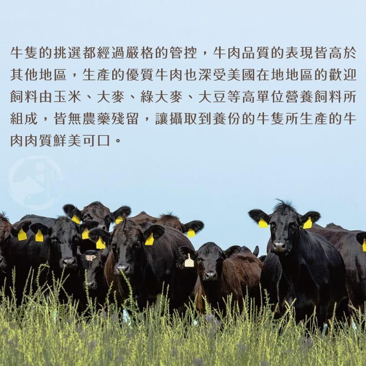 欣明◆美國安格斯黑牛雪花牛火鍋肉片(500g/1盒) 5
