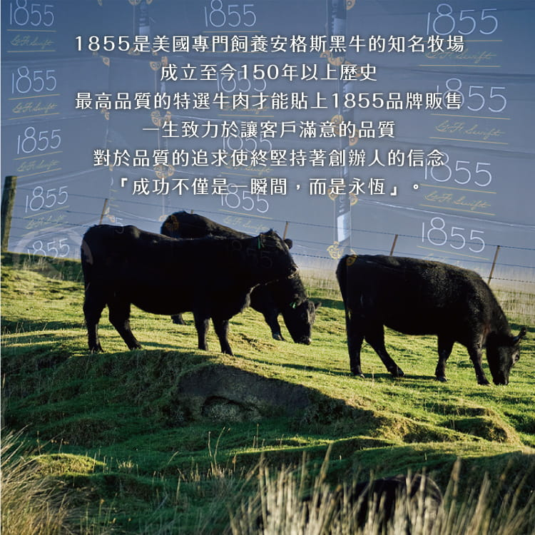 欣明◆美國1855黑安格斯熟成極鮮嫩肩牛排(120g/1片) 5