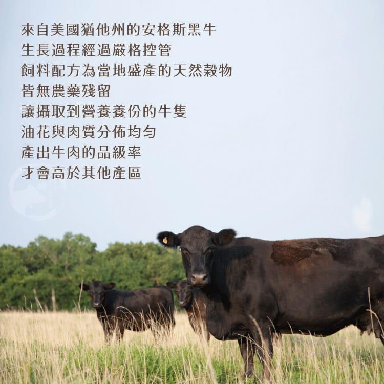 欣明◆美國藍帶凝脂霜降牛排(150g/1片) 4