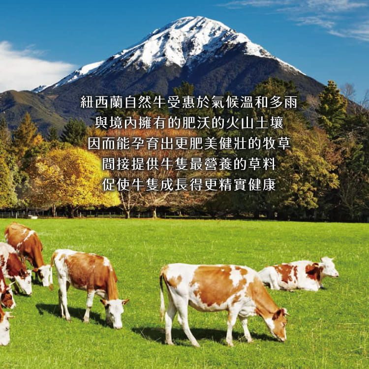 欣明◆紐西蘭PS霜降牛排(100g/1片) 5