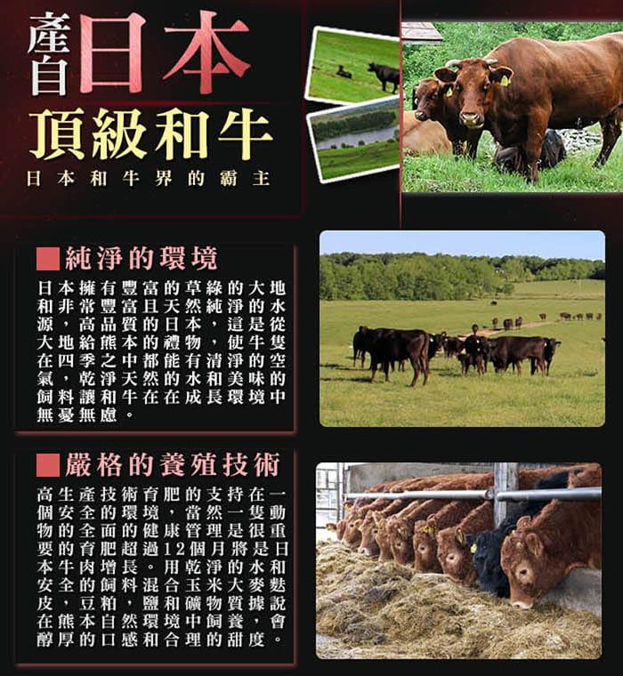 【好神】日本頂級A5和牛霜降肉片(100g±10%/盒) 2