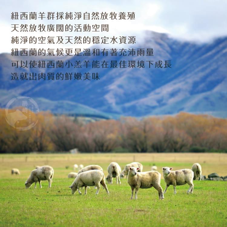 欣明◆紐西蘭頂級小羊OP肋排(620~680g/1包) 6